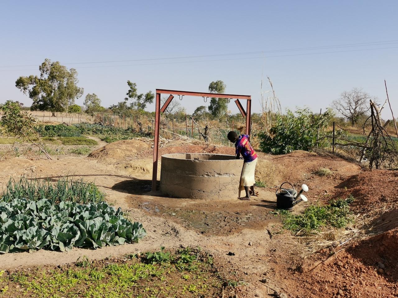 Un des 2 nouveaux puits au grand jardin
